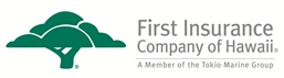 FICO Logo_H_4C